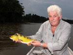Rio Tefé-Reise 2010: Der schön gefärbte Buntbarsch Cichla ocellaris lebt in großer Zahl in den Seitenarmen des Rio Tefé. Er ist unter den Anglern in Brasilien so beliebt wie in Europa der Hecht und ist in allen Flüssen des Amazonas zu finden.