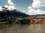 Entlang des Mahakam-Flusses kann man nach wenigen Kilometern die nächste Holzverladestelle beobachten.