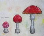 菌類の成長(個人蔵)