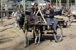 Sonntagsmarkt, Kashgar, Xinjiang-Provinz, VR China
