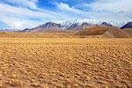 Transalai-Kette, Kirgistan