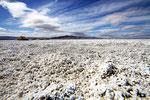 Salzfläche bei Amargosa, Kalifornien