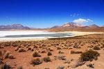 Salzsee Salar de Surire, Chile