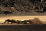 Landschaft bei Ardoukoba, Dschibuti