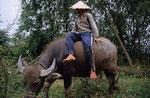 Mekong-Delta, Vietnam