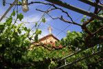Kloster Agia Thekla, Mosfiloti