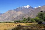 Landschaft bei Yamg, Gorno-Badakshan, Tadschikistan