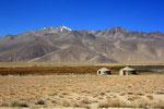 Kirgisen-Jurten im Pamir bei Alichur, Tadschikistan