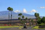 Blick zum Mauna Kea