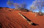 Simpson Desert, Australien