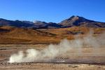 El Tatio Geysire,  San Pedro de Atacama, Chile