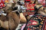Kashgar, Provinz Xinjiang, VR China