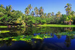 Punalu ´u-Lagune