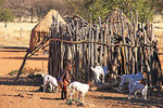 Himbadorf, Western Etosha