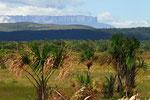 Tafelberge (Tepuis), Gran Sabana