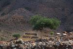 Siedlung im Gebiet Godaberge, Dschibuti