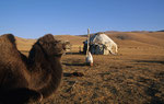 Jurte am Son-kul-See, Kirgistan