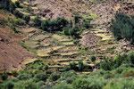 Felder im Wakhan-Korridor, Afghanistan