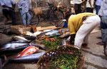 Stone Town, Sansibar, Tansania