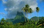 Mouaputa (830 m), Morea, Französich Polynesien