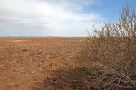 In der Wüste Dascht-e Kavir
