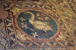 Antiker Mosaikboden,  Basilika von Soloi