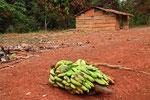 Goumela, Republik Kamerun