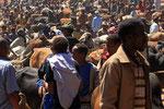 Kobo, Viehmarkt,  Äthiopien