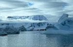 Cuverville Island, Antarktis