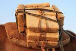 Salztransport Ass-Ale Salzse, Danakil-Senke, Äthiopien