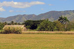 Landschaft bei Las Terrenas, Dominikanische Republik