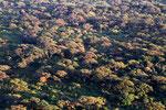 Trockenwald im Nechisar-Nationalpark bei Arba Minch