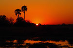 Moremi Game Reserve, Okavango-Delta