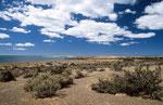 Landschaft bei Punta Tombo, Argentinien