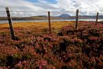 Loch Eriboll, Nord-Schottland