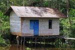 Hütte am Sekonyer River, Tanjung Puting Nationalpark, Borneo