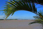 Surinam-River, Paramaribo, Surinam