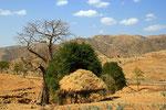Landschaft bei Axum