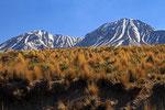 Landschaft im Nationalpark Lauca, Chile