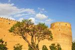 Shiraz, Zitadelle Karim Khan