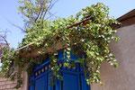 Khujand, Tadschikistan