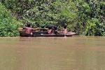Sangha-Fluss, Grenze zur Zentralafrikanischen Republik, Republik Kongo