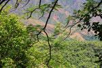 Landschaft bei Milot, Haiti