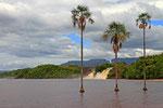 Canaima-Lagune, Gran Sabana