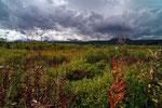Landschaft bei bei Esso, Kamtschatka
