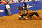 Rodeo, Austin, Texas