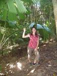 Standing under the umbrella palm