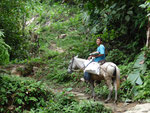 Lost City Tour, Meuls, horses and dunkeys were the only means of transportion in the jungle