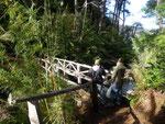 Hike through Huerquehue National Park
