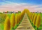 ポプラ並木が色付く頃に